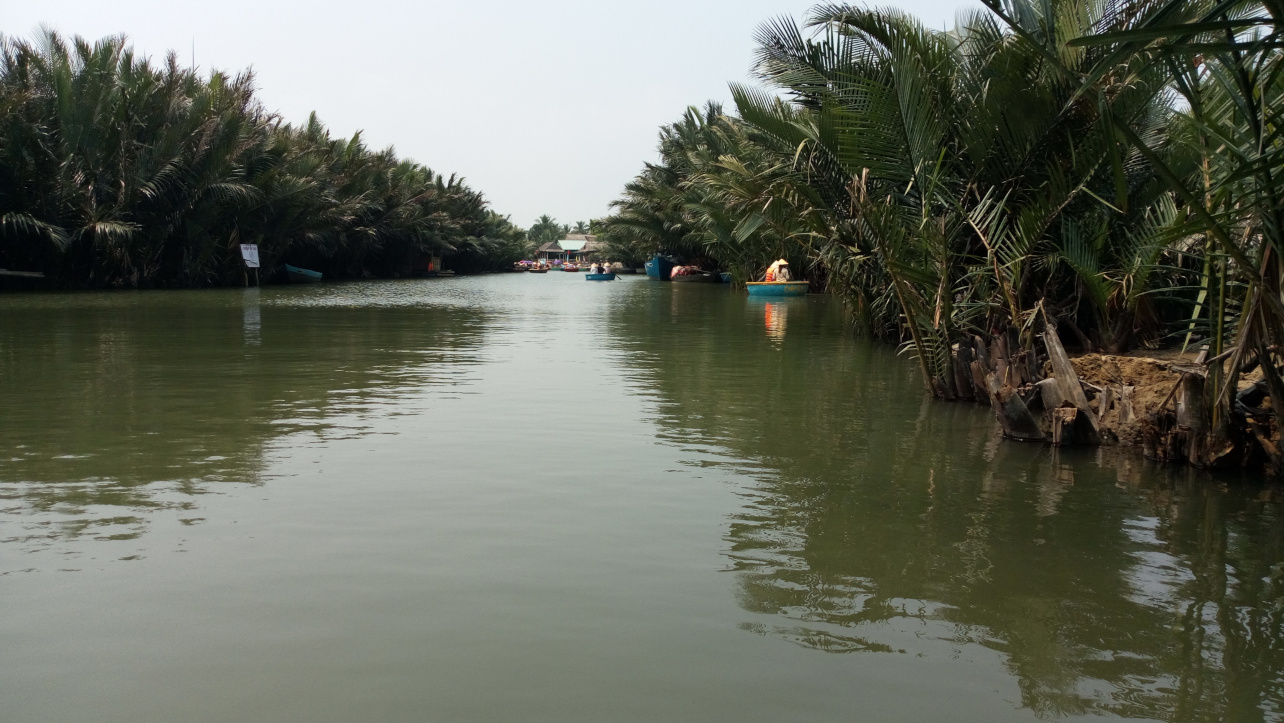 Beautiful road of Bay Mau Coconut Forest