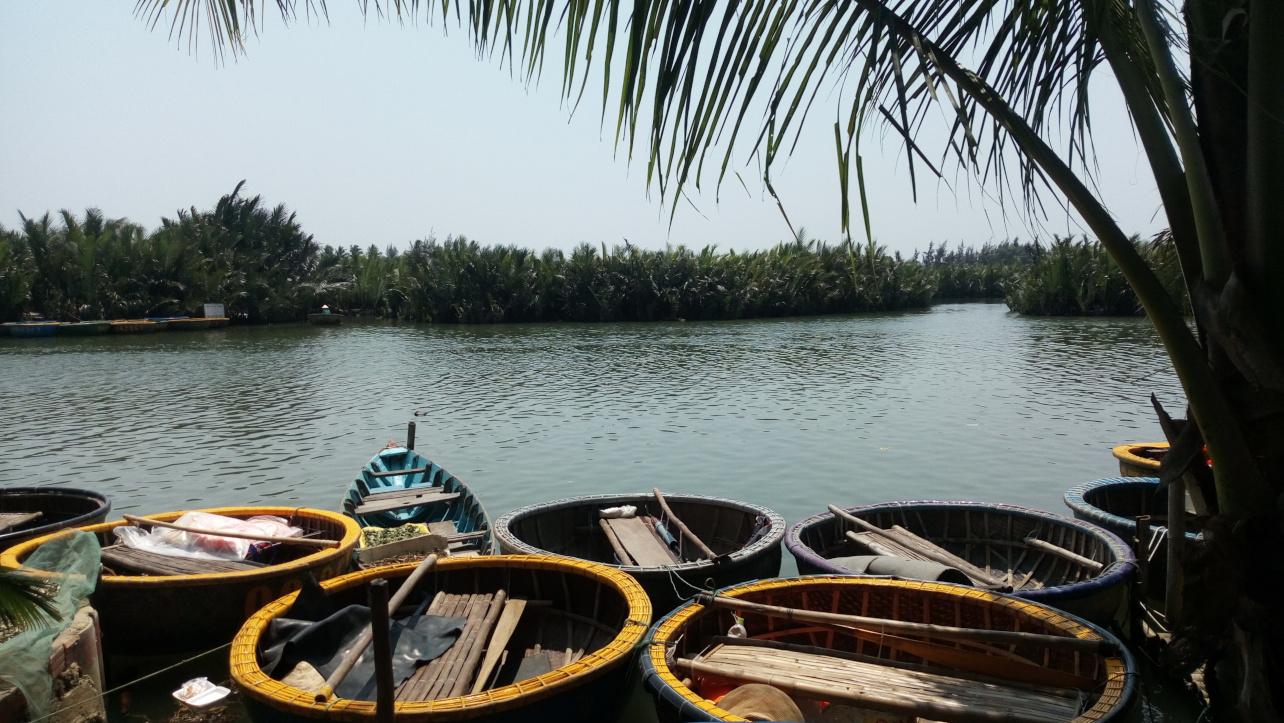 Thuyền trên đang neo đậu tại rừng dừa Bảy Mẫu