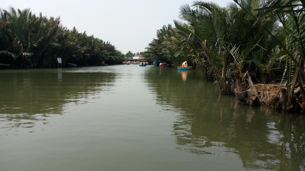 Bay Mau 코코넛 숲의 아름다운_길